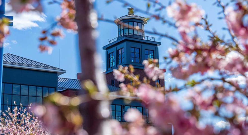 steelpointe-lighthouse copy